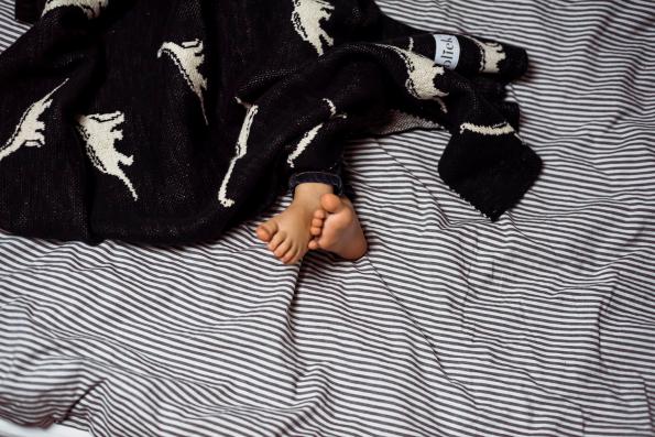 fabliekosaurus blanket