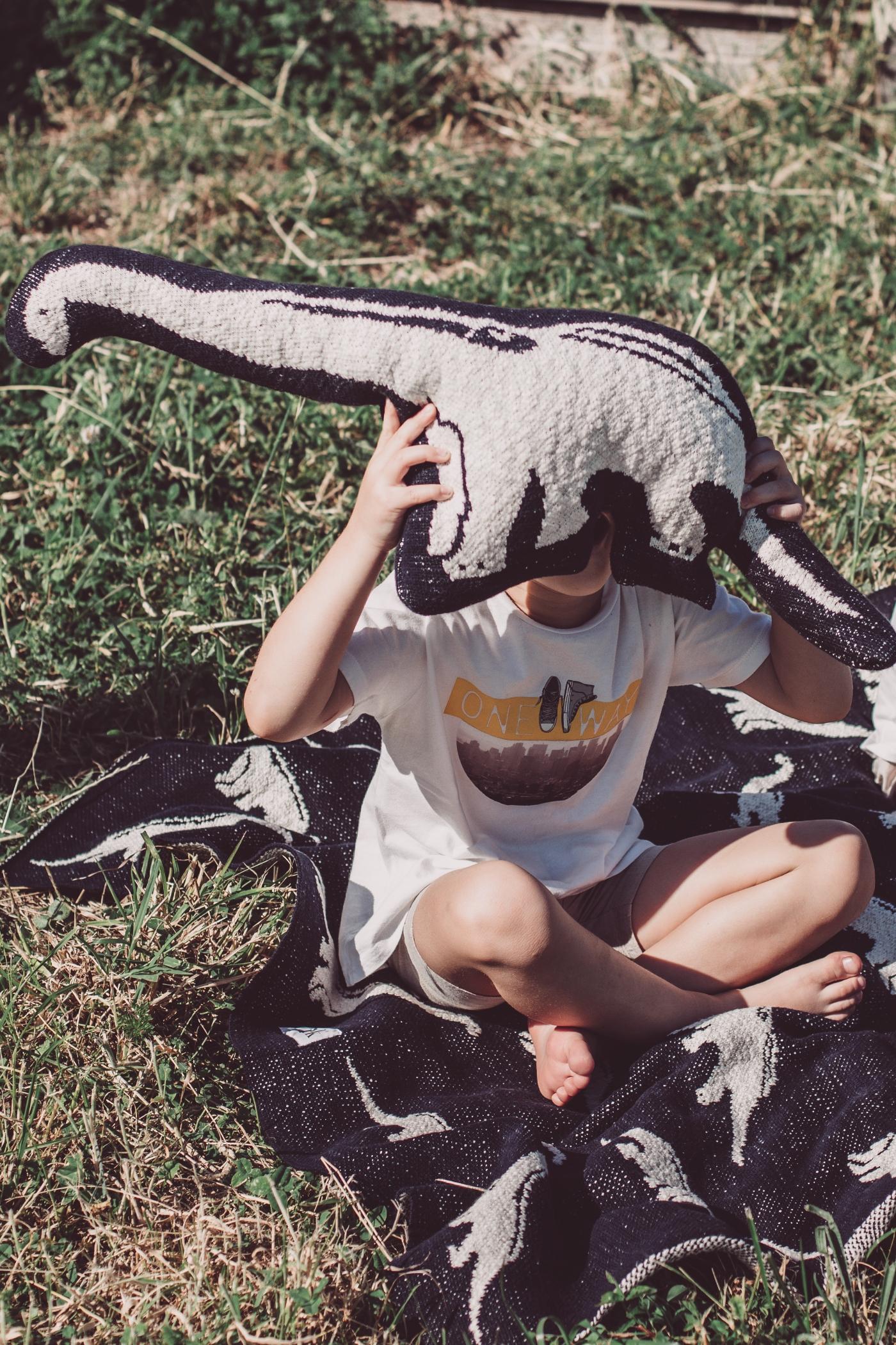 fabliekosaurus_toy