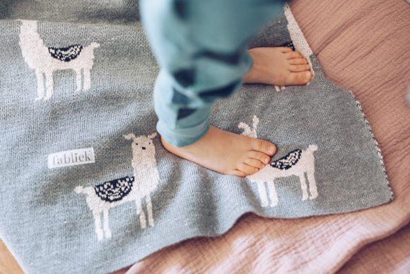 lamas blanket